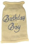Birthday Boy Rhinestone Knit Pet Sweater LG Cream